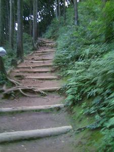 日和田山 001.JPG