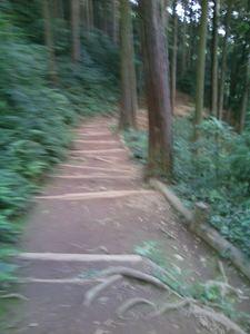 日和田山 002.JPG
