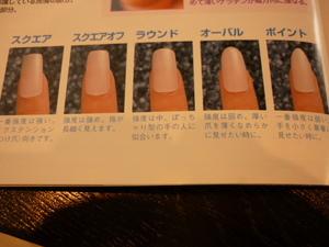 爪の形 006.JPG